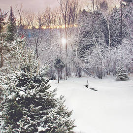 Gwen Gibson - Mystic Winter Scene Print