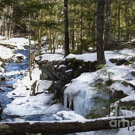 Mim White - N H Forest