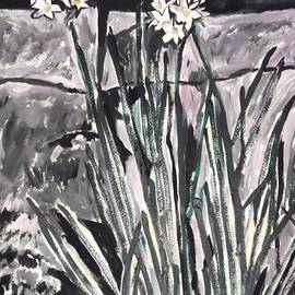 Esther Newman-Cohen - Narcissus at Night