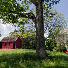 Betty Denise - Nathan Hale One-Room Schoolhouse
