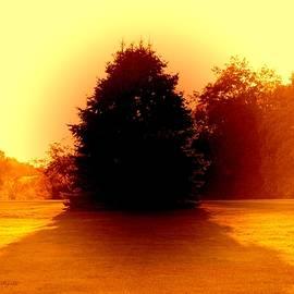 Sonali Gangane - Nature 2