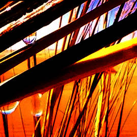 Colette V Hera  Guggenheim  - Nature Harmony