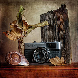 Stephen Morris - Nature - Photography