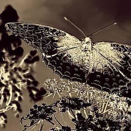 Arnie Goldstein - Natures Beauty