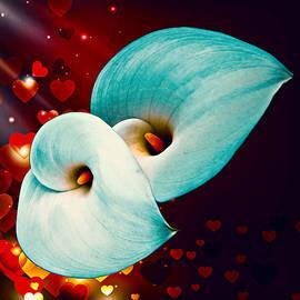 Nick Kloepping - Natures Heart