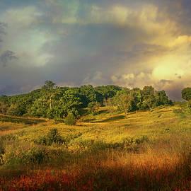 John Rivera - Natures Landscape