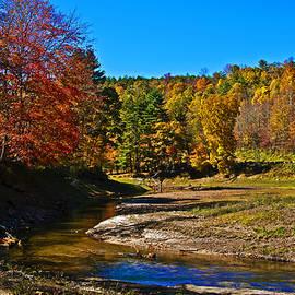 Michael Whitaker - NC autumn Mountain Stream