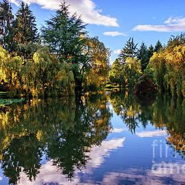 Viktor Birkus - Near The Lake In The Autumn Park