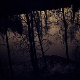 Jouko Lehto - Negative view