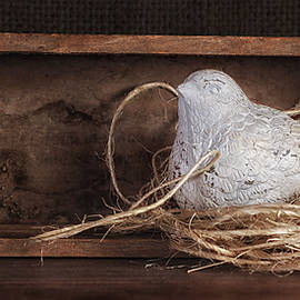 Tom Mc Nemar - Nesting Bird Still Life II