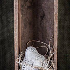 Nesting Bird Still Life - Tom Mc Nemar