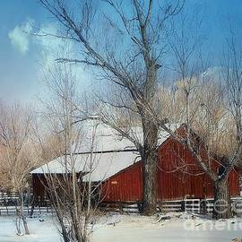 Bobbee Rickard - Nevada Barn in the Winter in Color
