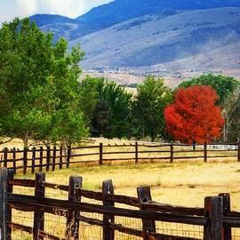 Bobbee Rickard - Nevada Fall