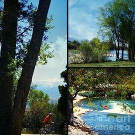 Bobbee Rickard - Nevada Recreation Collage