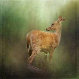 Jordan Blackstone - New Day Dawning - Wildlife Art