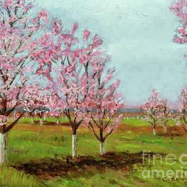 Cindy Roesinger - New Hope Tree Farm