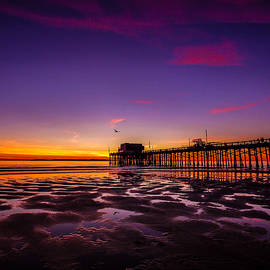 Pamela Newcomb - Newport Pier Sunset
