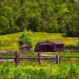 Tricia Marchlik - Newton Farm