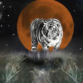 Ericamaxine Price - Night of the Tiger