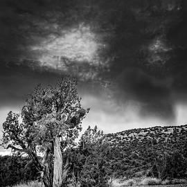 Alexey Stiop - Nightfall in Arizona