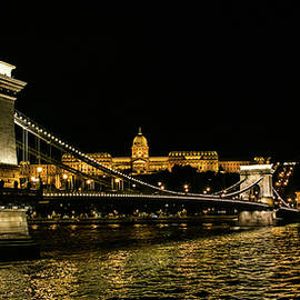 Lisa Lemmons-Powers - Nightscape on the Danube