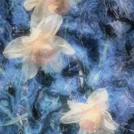 RC deWinter - Nighttime Narcissus