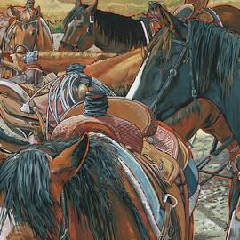 Nine Saddled
