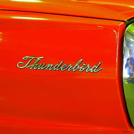 Jeff Swan - Nineteen Sixty six Ford thunderbird