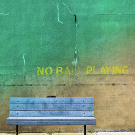 Colleen Kammerer - No Ball Playing - Signs