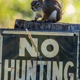 Paul Freidlund - No Hunting