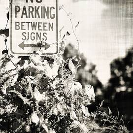 A R Williams - No Parking Between Signs