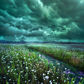 Phil Koch - No Way Out