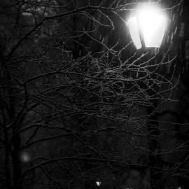 James Aiken - Noir Snowy Scene