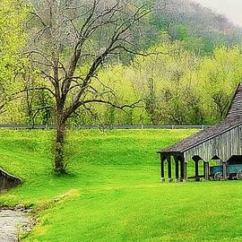 Toni Abdnour - Norris Tennessee Countryside 2