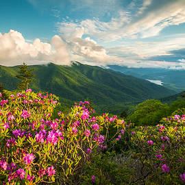 Dave Allen - North Carolina Blue Ridge Parkway Spring Mountains Scenic Landscape