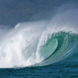 Sean Davey - Hawaii Five-0