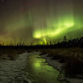 Jakub Sisak - Northern Lights at the Sleeping Giant Provincial Park