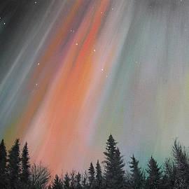 Elisabeth Dubois - Northern lights