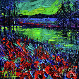 Mona Edulesco - Northern Lights Embracing Poppies