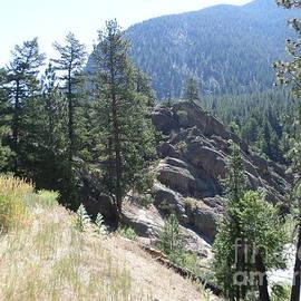 Kay Novy - Northern Rockies Missoula Montana USA