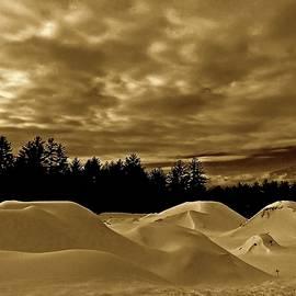 Elizabeth Tillar - Northern Snowscape in Sepia
