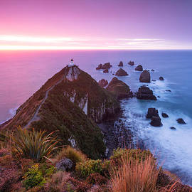 Matteo Colombo - Nugget point lighthouse at dawn - Otago - New Zealand