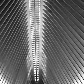 James Aiken - NYC Oculus and 1 WTC - BW