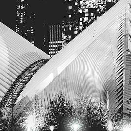 Regina Geoghan - NYC World Trade Transportation Hub