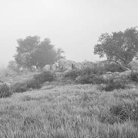 Alexander Kunz - Oaks and Rocks - Highland Valley Trail