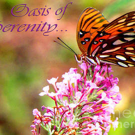 Gardening Perfection - Oasis Of Serenity