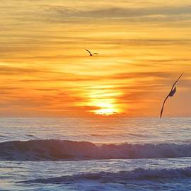 Barbara Ann Bell - South Nags Head Sunrise