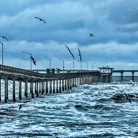 Daniel Hebard - Ocean Beach Fishing Pier