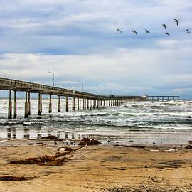 Daniel Hebard - Ocean Beach Pier Fishing Airforce