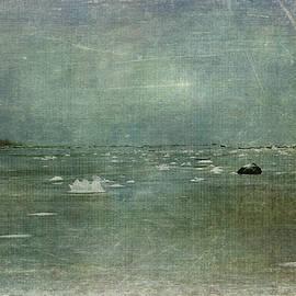 Randi Grace Nilsberg - Ocean Frost